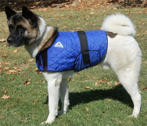 HYPERKEWL™ Dog Coat